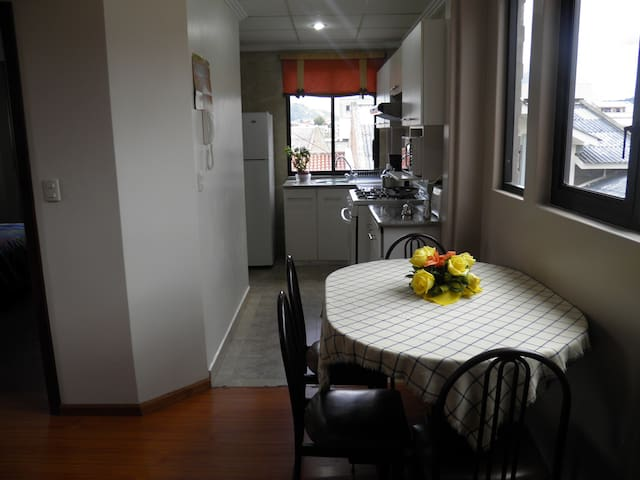 201-Furnished 1BD/BATH APT - Cuenca Canton - Appartement