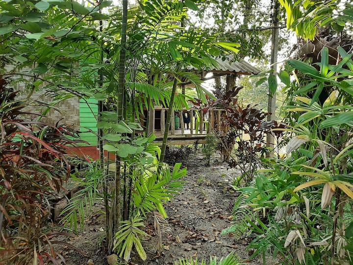 Phangan farm stay 201 Eco farming