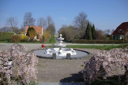 Summertime in Zonnemaire Zeeland - Zonnemaire