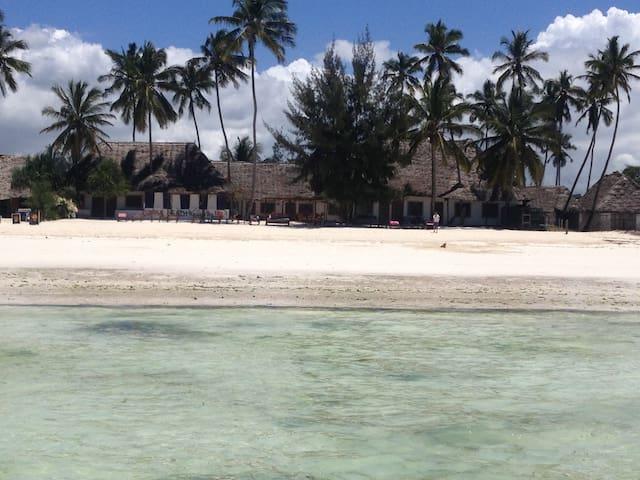 Simba Beach Zanzibar Ocean Resort-B&B-#3 - Kiwengwa - Bed & Breakfast