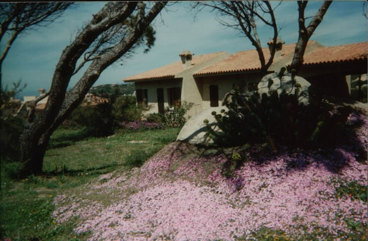 """Villa """"Sole"""" S. Reparata Bay   - Santa Teresa di Gallura - House"""