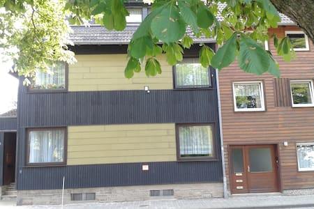 Gästehaus-Harly am Vienenburger-See - Vienenburg - House