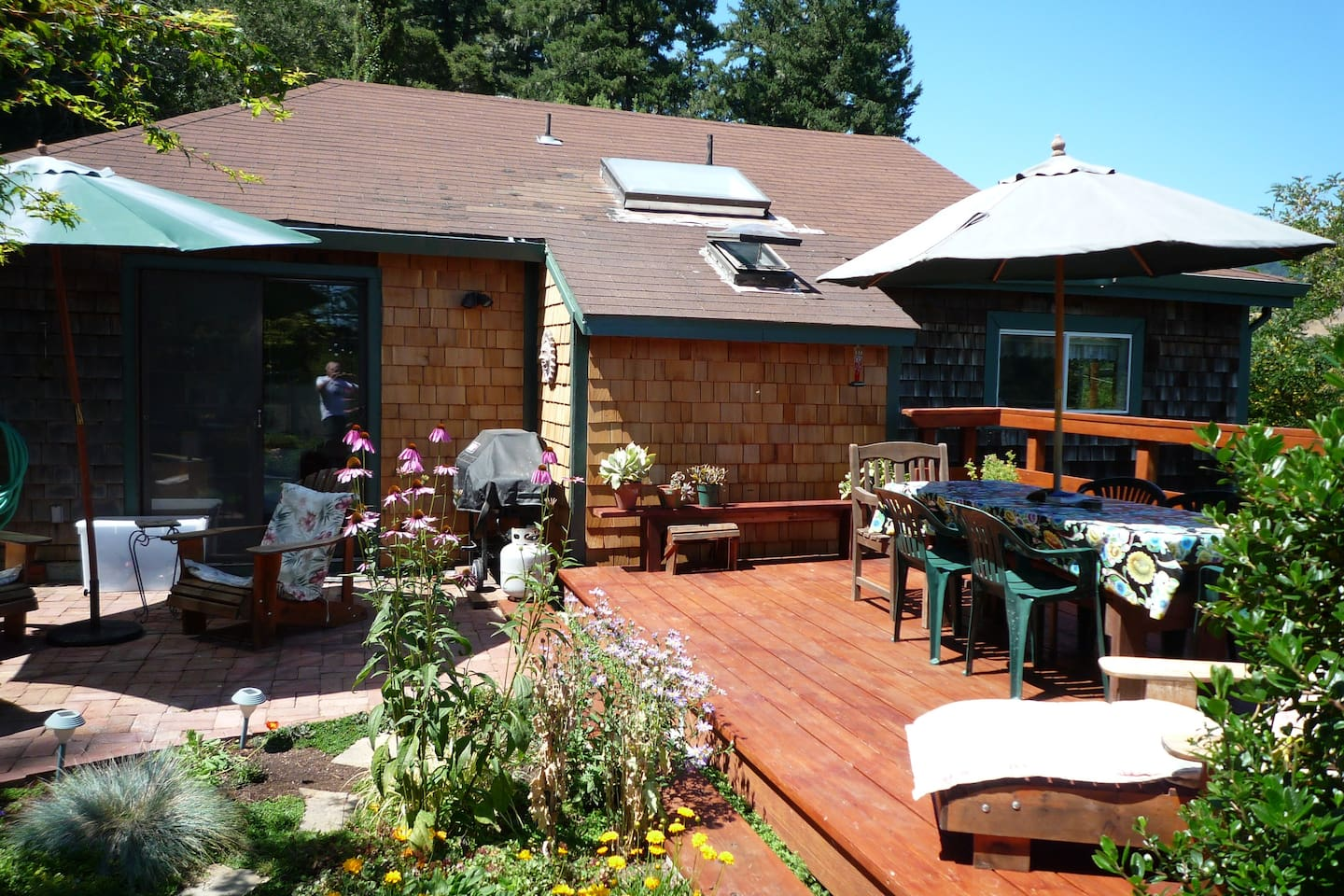 Back yard deck and patio