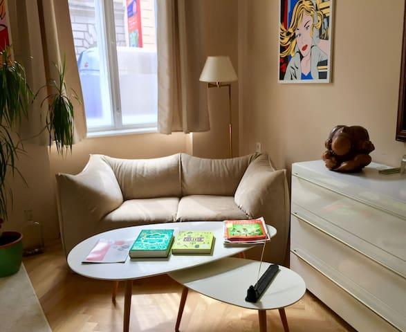 Cosy Apartment smart and beautiful near Schönbrunn