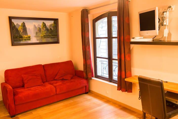 Wonderful apartment near Le Louvre & palais Royal - Paris