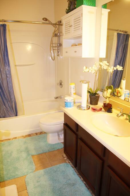 Full bathroom(tub,shower, toilet w/ bidet)