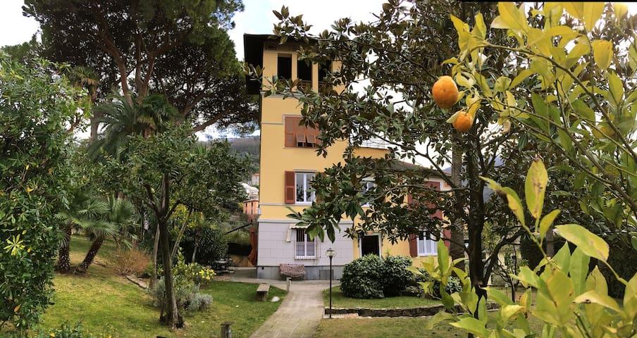 Villa Kef 14 LIGURIA - 6 bedroom - Camogli - Villa