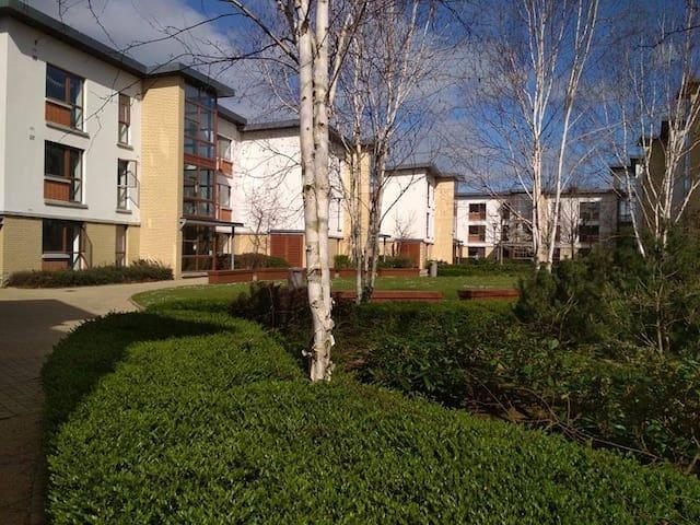 Apartment 38 room 2 Shanowen Square