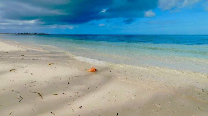 Old Bahama Bay, West End, Grand Bahama Island 1150