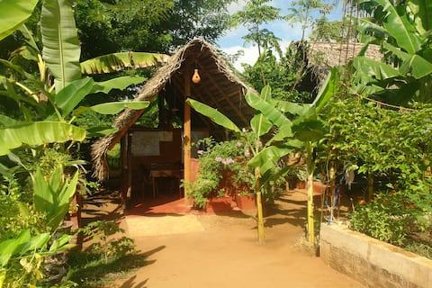 Homestay Camping Anuradhapura