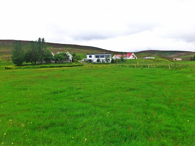 Cozy room near Thingvellir - Room 1 - Thingvellir - Talo