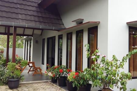 Disewakan Rumah Sawah Cibadak Sentul - Bogor
