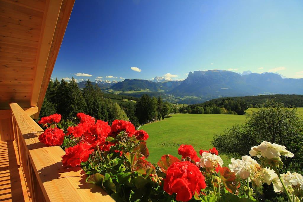 Freier Blick auf die Dolomiten