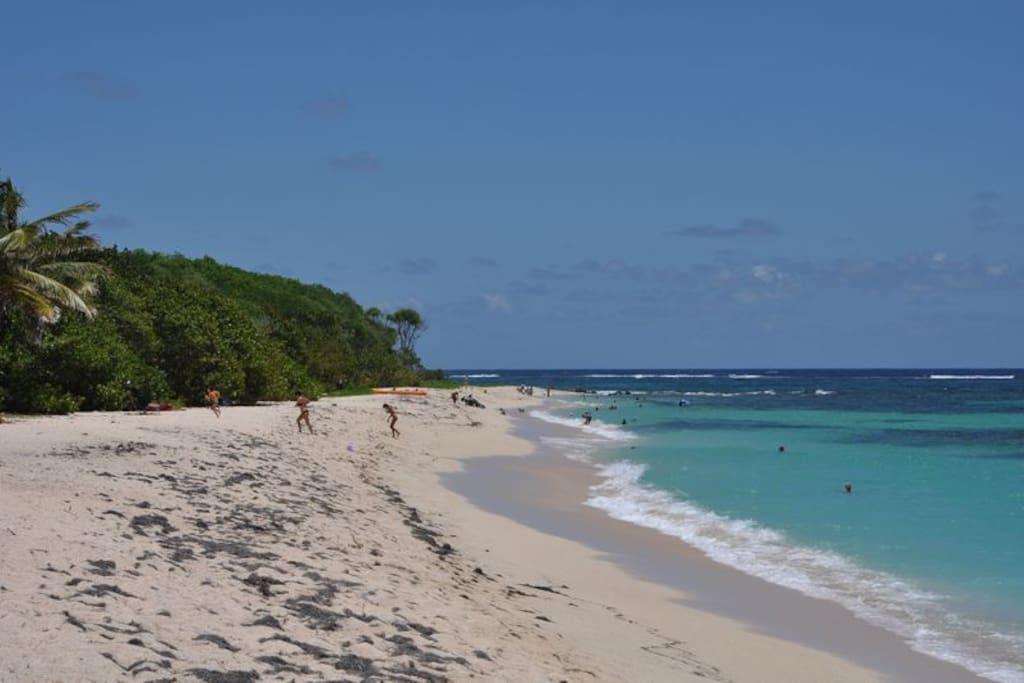 Votre plage,nature à souhaits