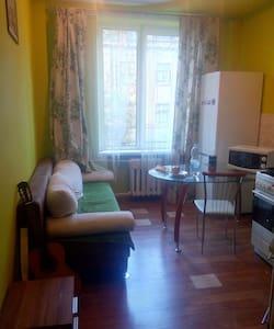 Cozy one-bedroom flat + a sofa - L'viv