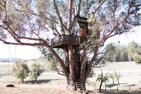Tree House at Swallowtail Studios - Petaluma