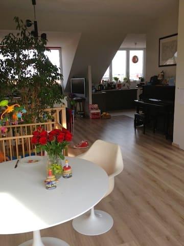 room with ATOMIUM view in Royal Cie - Bruselas - Bed & Breakfast