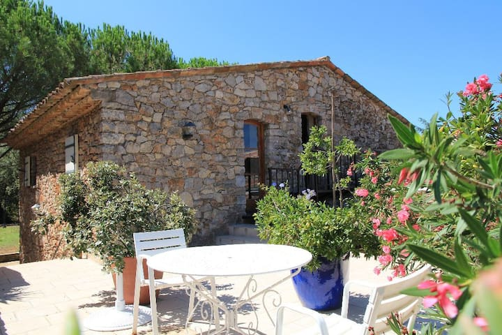 Flat in a restored knight-templar farm - Carcès - Appartement