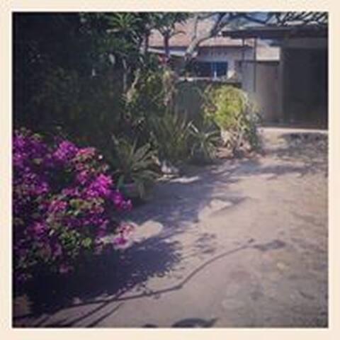 Rumah Mama Yati - Buleleng - House