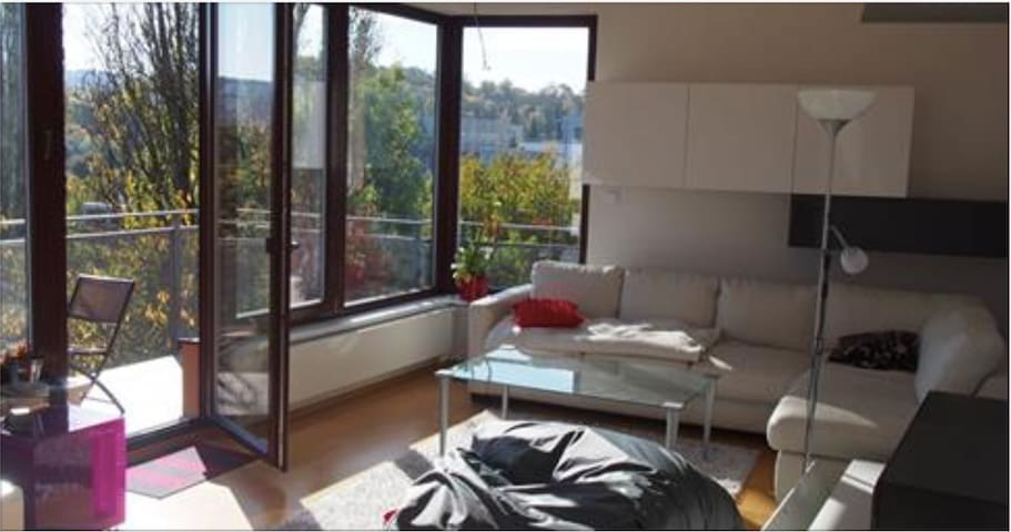 Beautiful apartment with 2 balconies facing south
