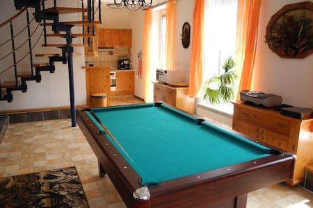Modern House w.pool in quiet area  - Budíkov - Haus