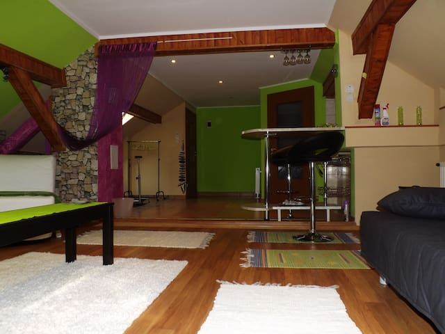Green Owl Apt.- Near the Airport! - Budapeşte - Daire