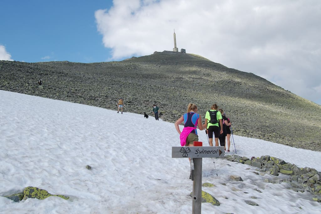 Walking to the summit. Track starts Close to cabin
