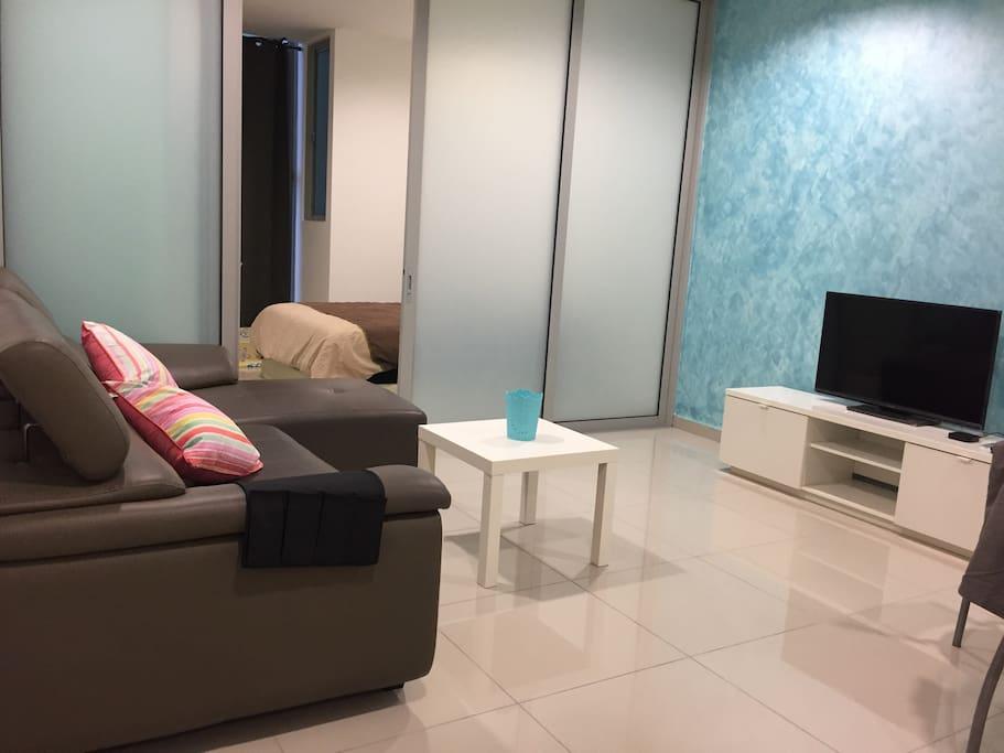 Studio you'll be in - Living Room + Bedroom.