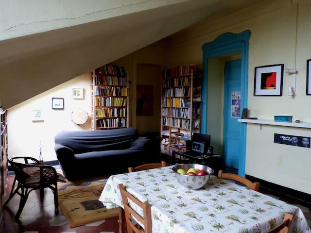 Camera in ampio appartamento zona San Salvario - Torino