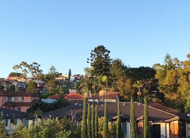Back yard view