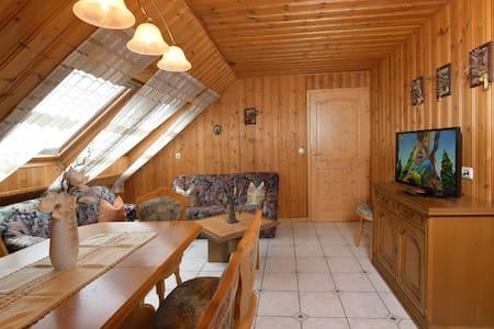Ferienhaus in Drognitz, Fewo Birke - Drognitz - Apartment - 1