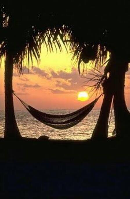 Sunrise hammock spot