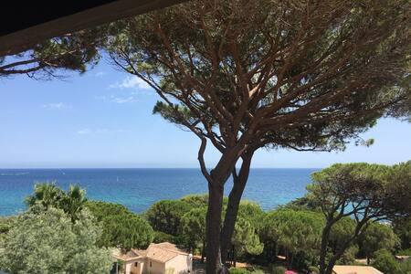 Golfe de St Tropez, Plage a 50m, T2 refait a neuf - Sainte-Maxime - Flat