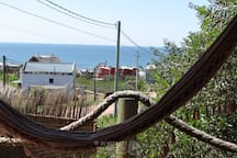 The view from your hammock in Bossanova