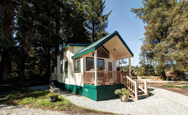 GET BIRDY AND STAY AT THE BIRDER - Bay City - House