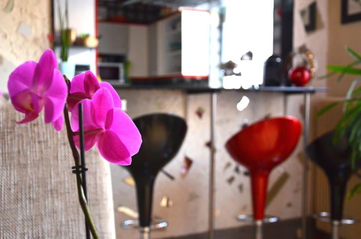 bel appartement proche de la gare - Mulhouse - House