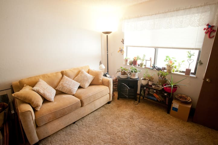 Sofa Sleeper in a Private Room  - Broomfield