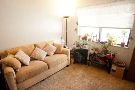 Sofa Sleeper in a Private Room  - Broomfield - Talo