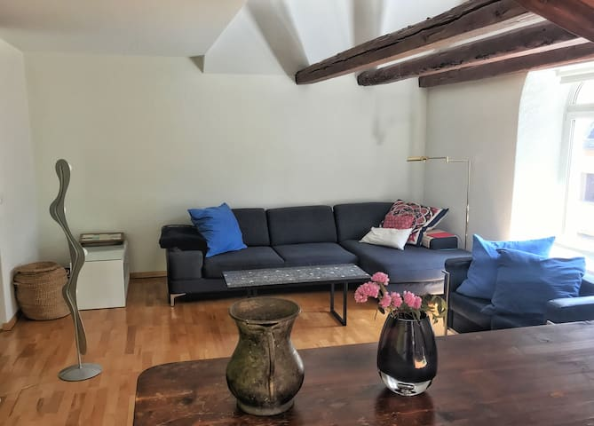 Appartment in the heart of alternative Zurich