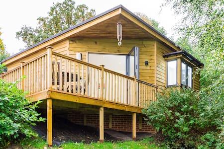 Amazing woodland lodge near Cobham - Chalé
