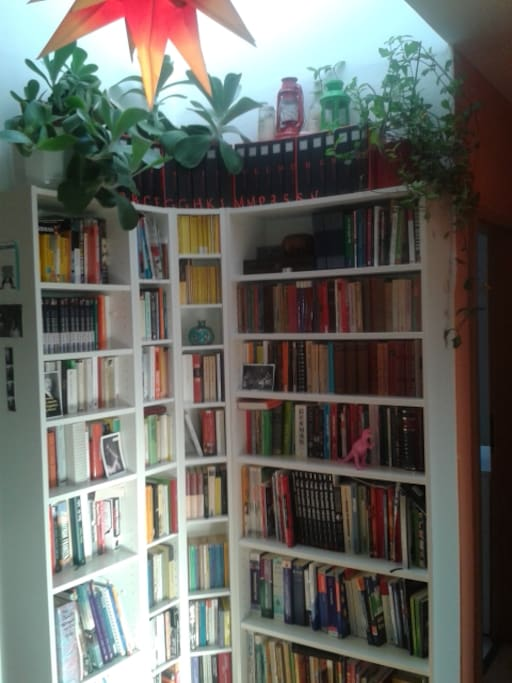 Our book shelve with Berlin Guide books