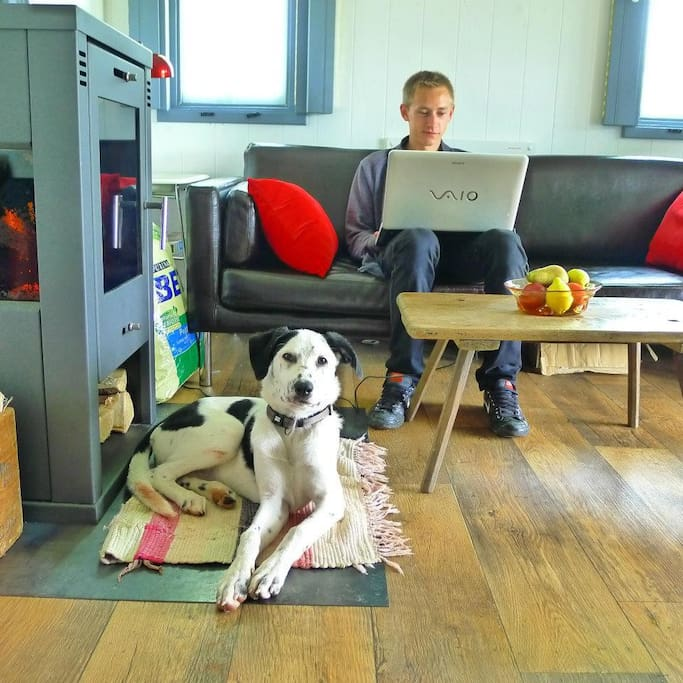 Peaceful writers' cabin WIFI PetsOK