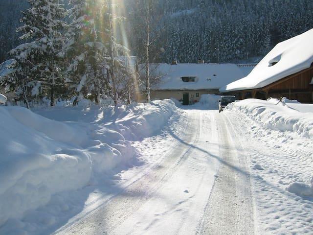 Lust auf Urlaub in Zeitlupe? - Wald am Schoberpass - House