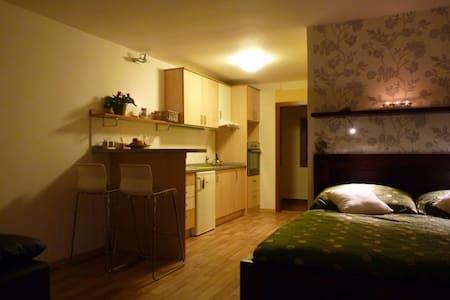 Apartma Krkonose - Martinice v Krkonoších - บ้าน