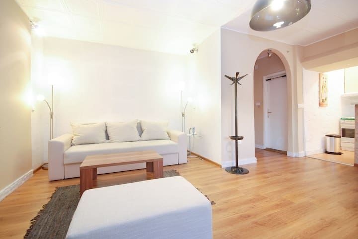 Budget friendly and in city center! - Belgrade - Apartment