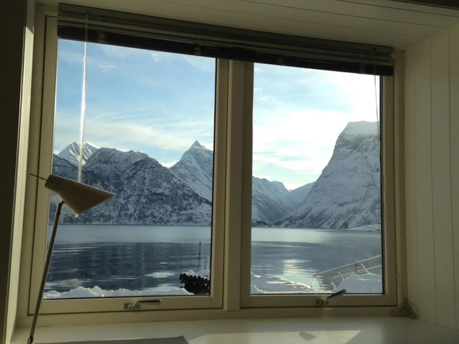Utsikt mot fjorden