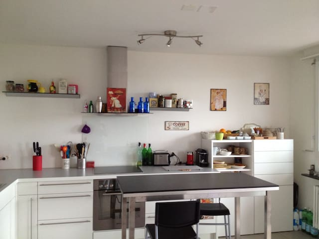 Sunny and Spacious 3 bedroom apartment - Basel - Flat