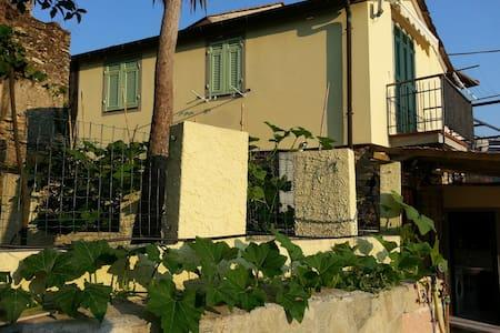Villa tra gli ulivi a 12 mn dal mar - Stellanello - Rumah