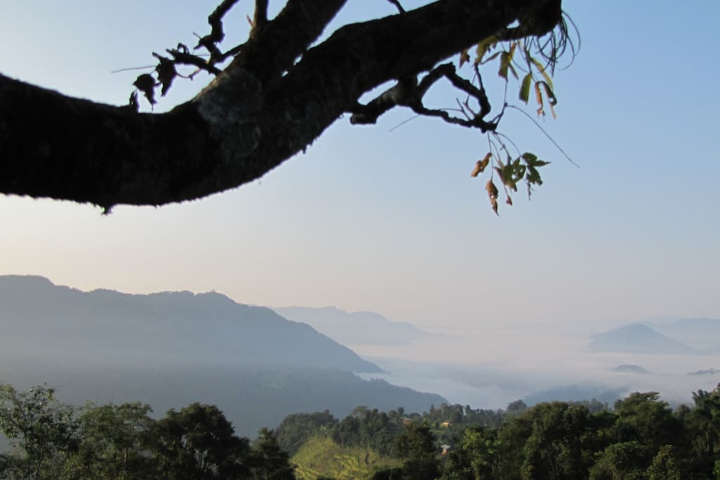 The view of Rupa Lake that you wake up to every morning!
