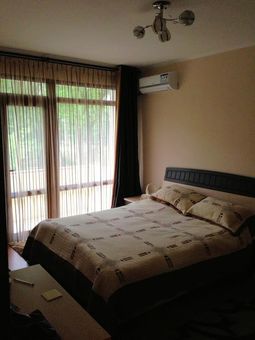 Bedroom with semi-private balcony, facing the park. Sheer and blackout curtains. Air conditioner/heater. Plenty of closet space.